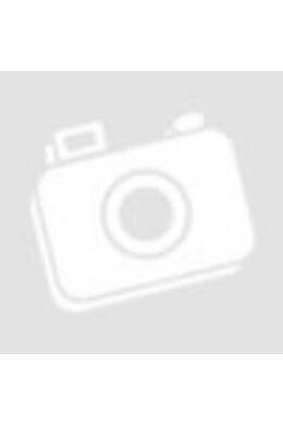 CarpZoom Átlátszó tetejű táska XL (32x22x8 cm) CZ2583